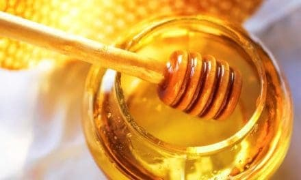 Medical-Grade Honey Helps Horse Wounds Heal