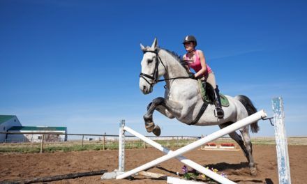 Study: Most Horses Go Back to Work After Colic Surgery