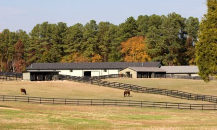 Making Winter Manageable on Horse Farms