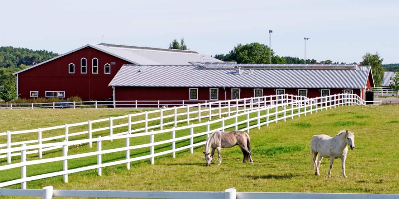 Barn Stall And Fence Maintenance The Horse