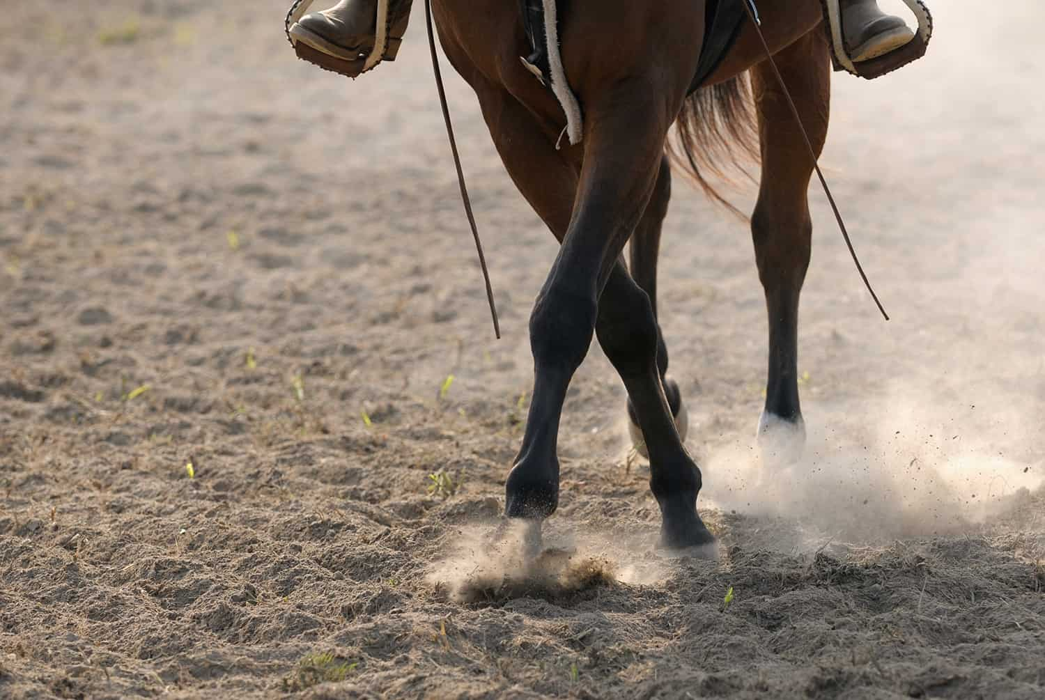 The best way to avoid dusty arena footing is to begin with the right footing--the least dusty option.