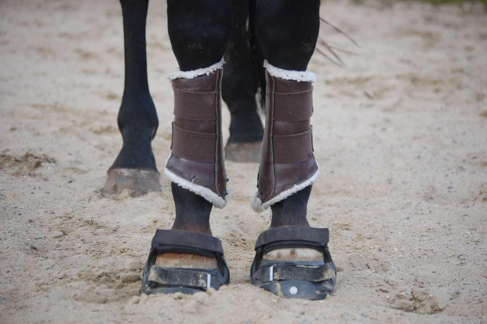 How Hoof Boots Impact a Horse\u0027s Walk \u2013 The Horse