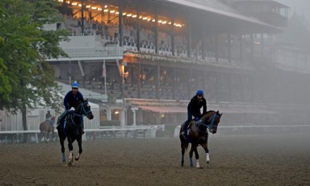 NYSGC Investigating Spate of Horse Deaths at Saratoga