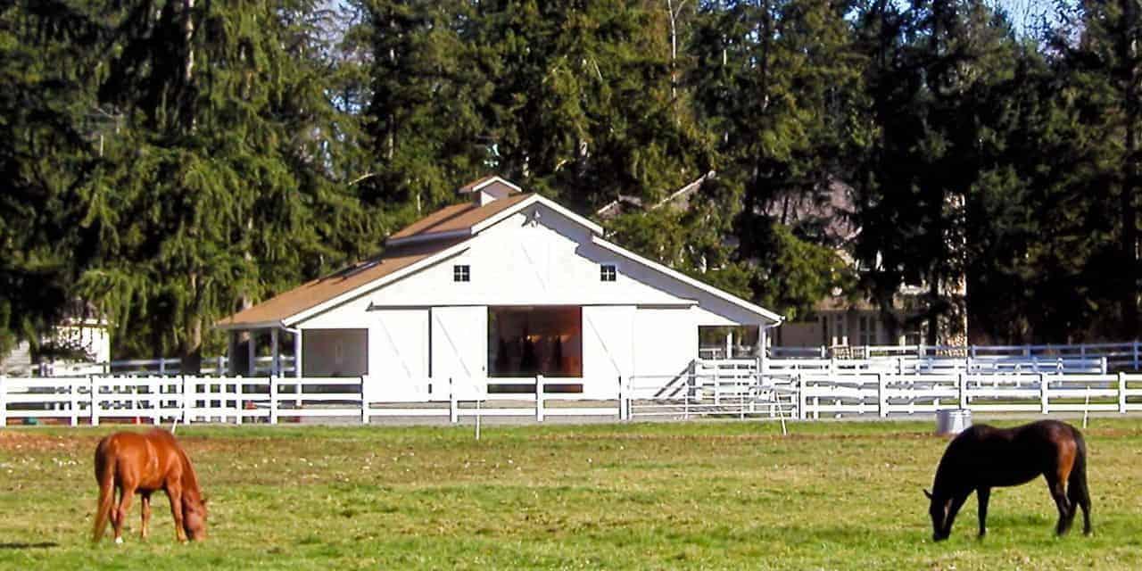 Poll Recap: Horse Farm Makeover