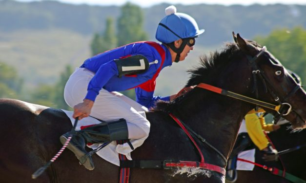 Researchers Study the Science Behind Whip Use in Racehorses