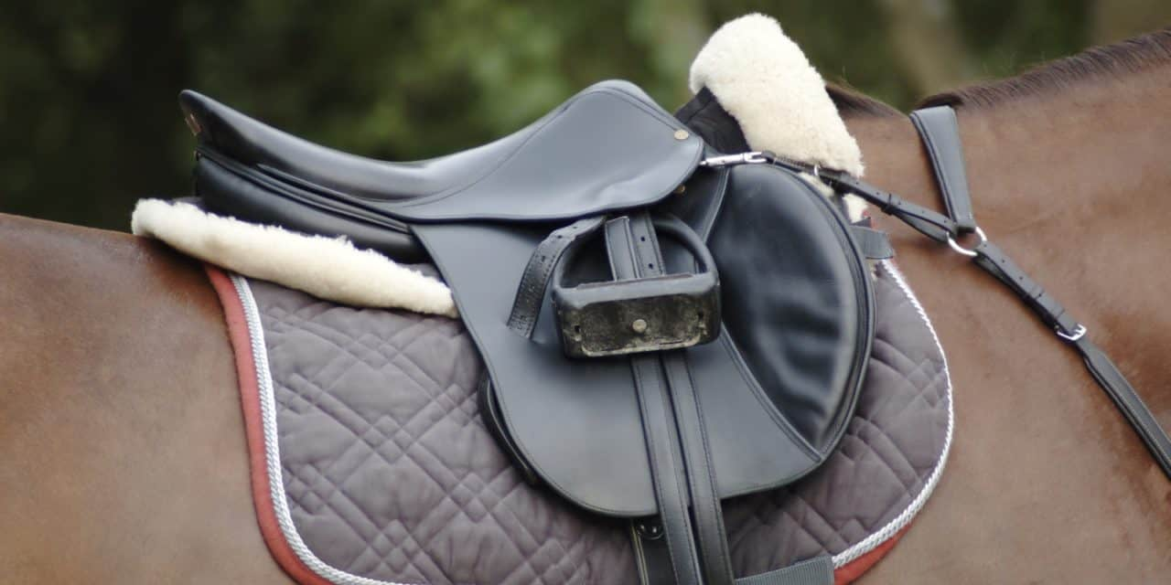 Poll Recap: Therapeutic Saddle Pads – The Horse