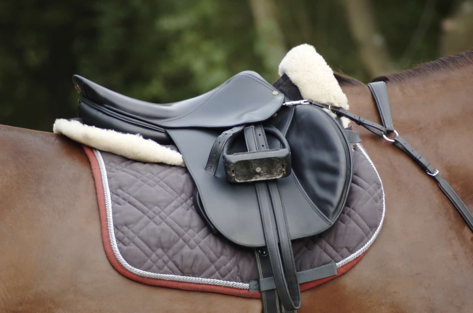 How To Sell Your Used Saddle In 7 Simple Steps The Horse