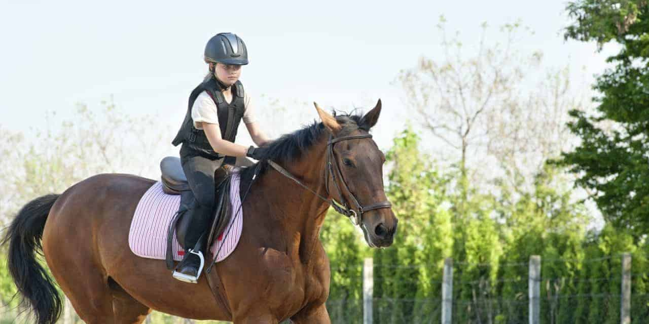 Helping Kids Jump Into The Horse World The Horse
