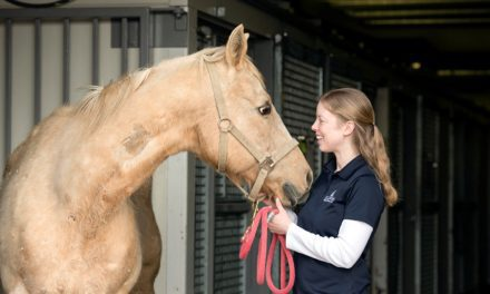 Behind the Coat: Equine Color Genetics Revealed