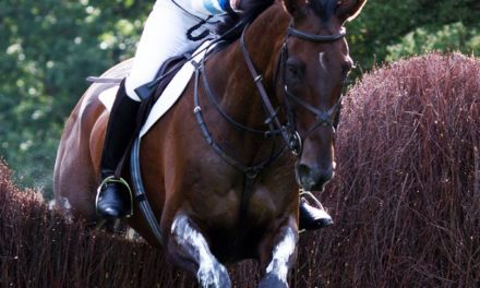 British Olympic Eventer Retired due to Cardiac Condition