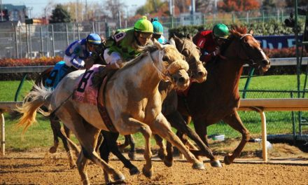 Is Sustainability a Heritable Trait in Thoroughbreds?