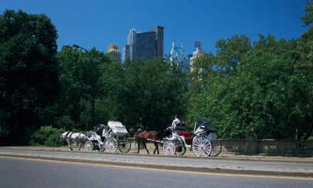 NYC Mayor, Carriage Cabbies Reach Agreement