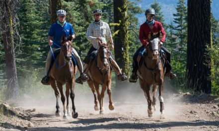 Toth and Take A Break Win Tevis Cup in Soaring Temperatures