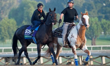 Breeders' Cup Sprint Contender Fatally Injured in Workout