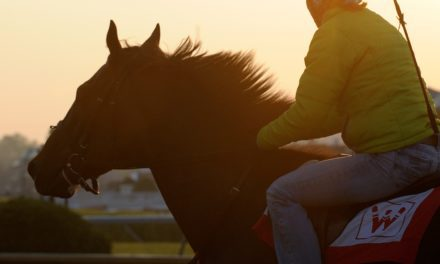 Scientists Revisit Historic Exercise Research in Racehorses