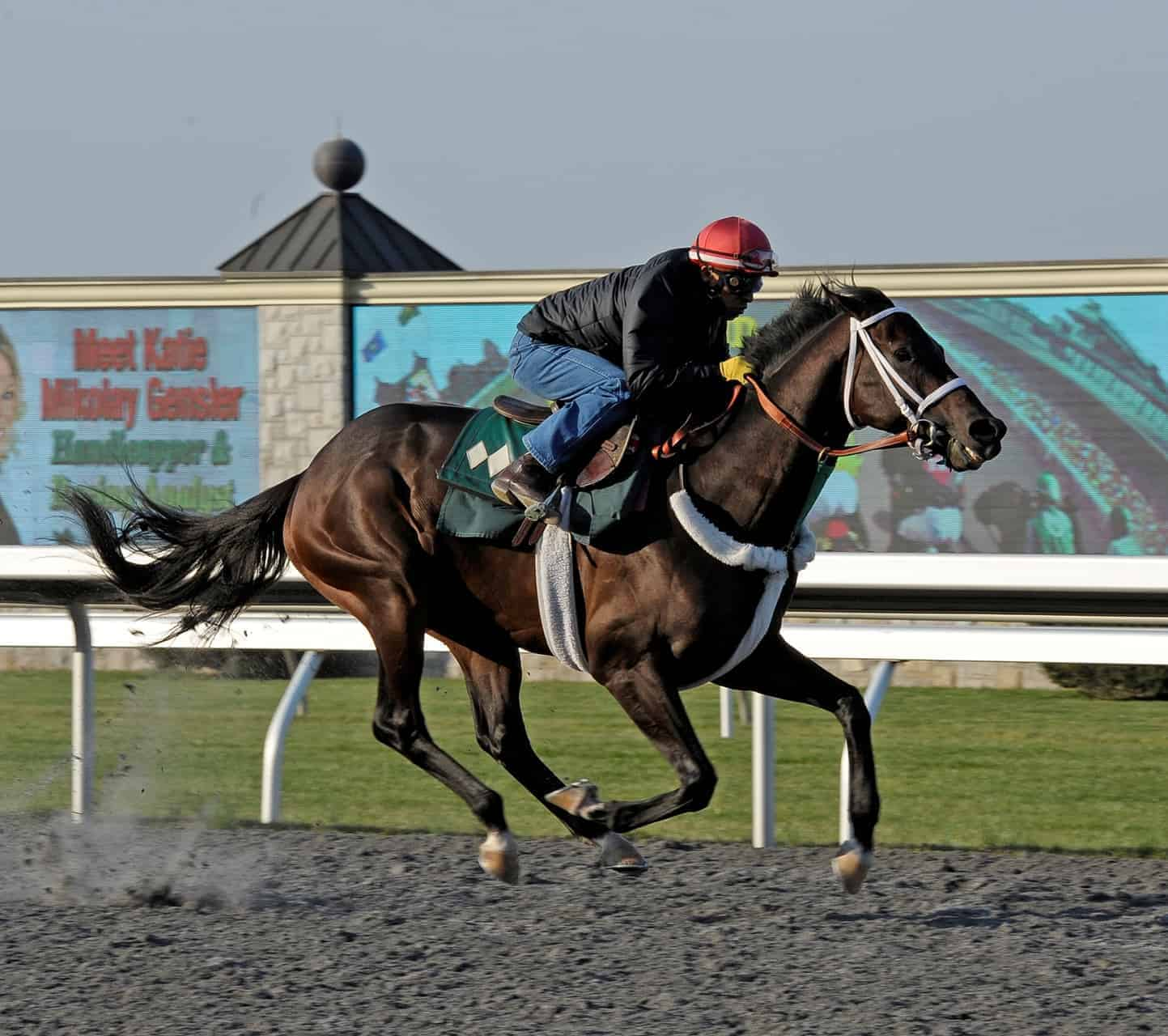 'Roarers': Surprise Results for Horses Racing Post-Surgery