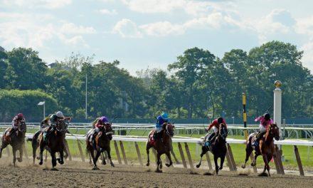 Catastrophic Equine Injuries' Impact on Jockey Injuries