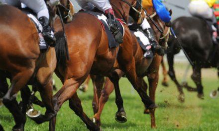 Study Evaluates Horseshoes, Track Type, Thoroughbred Safety