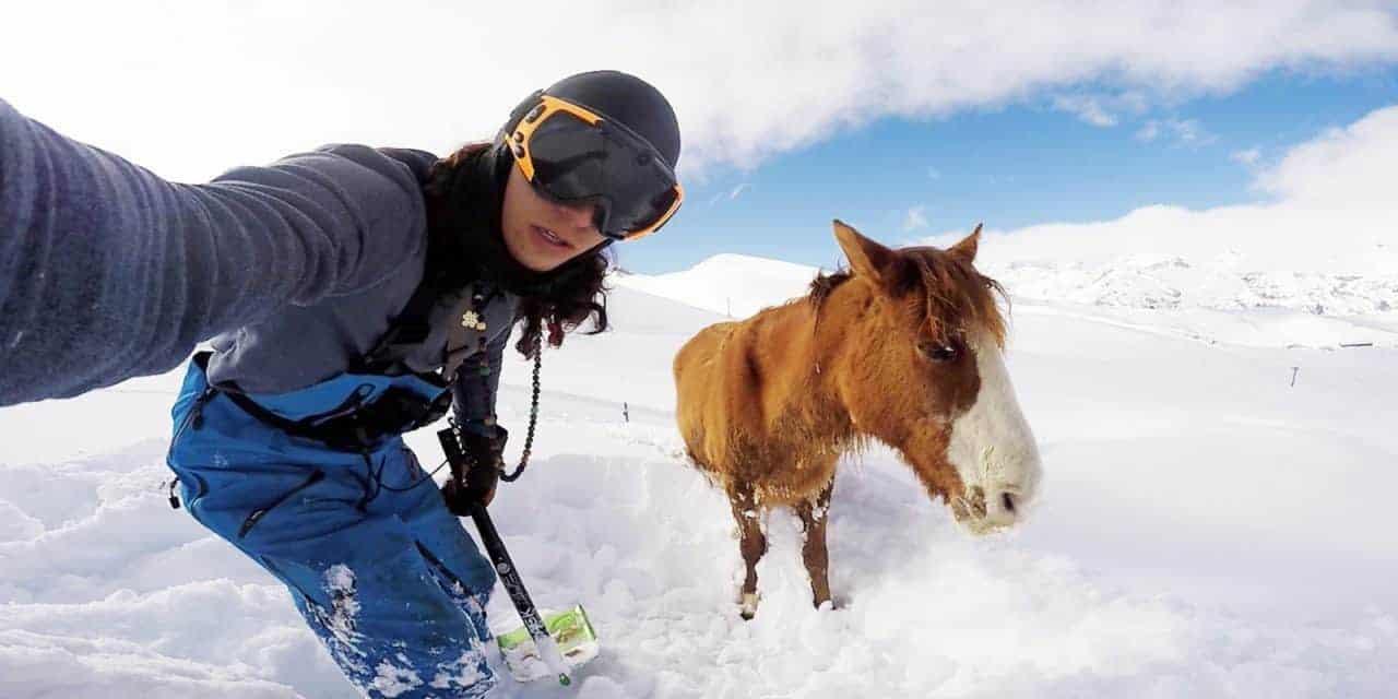 Snowboarder Rescues Snowbound Horse