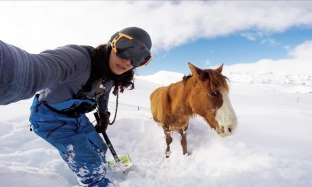 Snowboarder Rescues Snowbound Horse