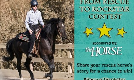 Enter The Horse's 'From Rescue to Rockstar' Contest