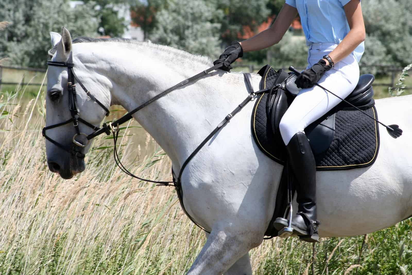 Black Horse Crop,Riding Whip for Horse,Performances and Shows.