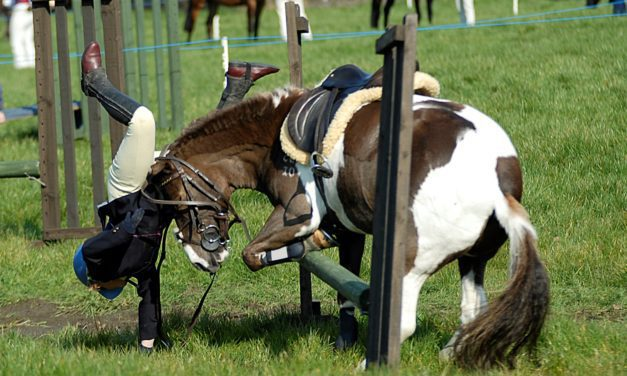 Rider Elbow Fractures More Complex in Horseback Accidents