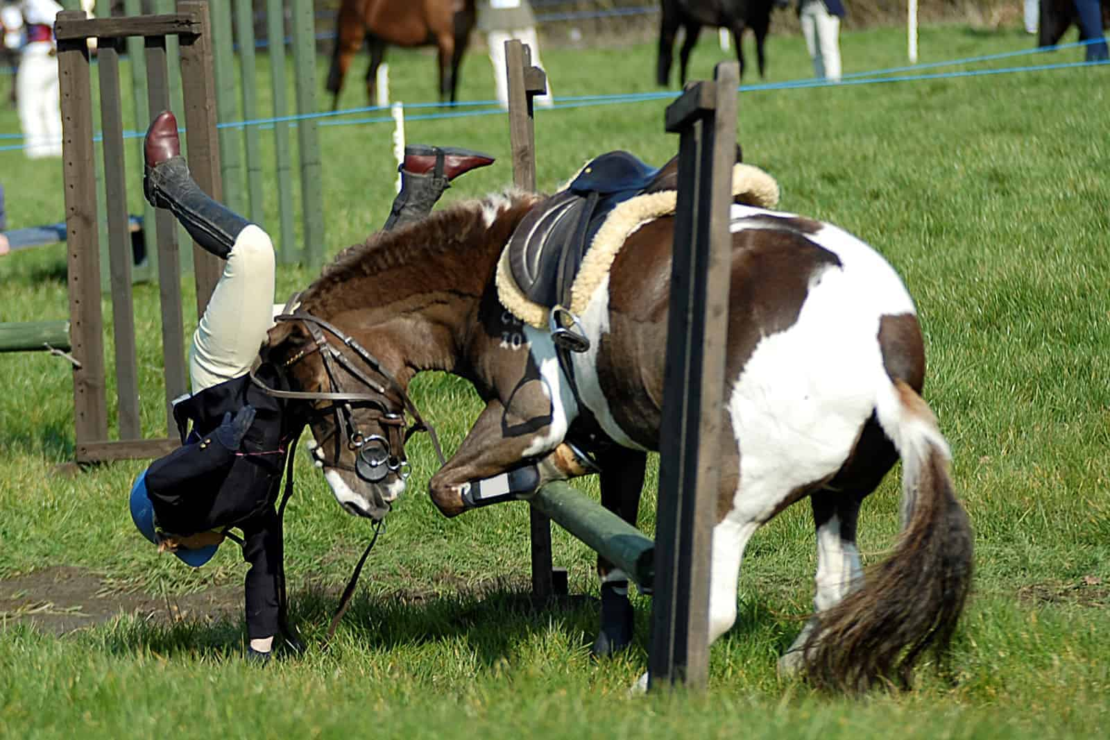 """rotational falls in horses Horse sport ireland (hsi) chairman pat wall says not enough is being done to tackle deadly """"rotational falls"""" in eventing, but the world governing body has disputed this."""