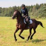 <em>The Horse</em>, KindredBio Bring You Cardiac Health Awareness Week