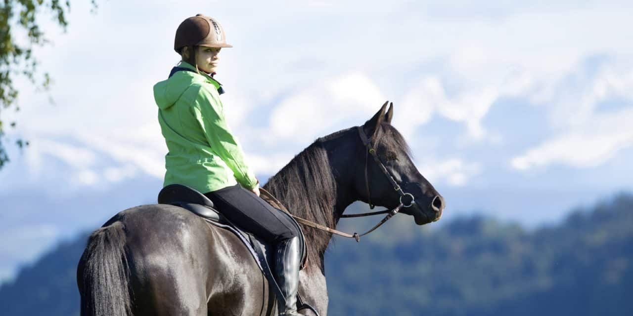 Poll Recap: Horse-Related Resolutions for 2018