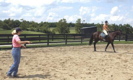Poll Recap: Managing Working Horses