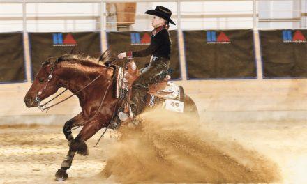 Super Senior Sport Horses