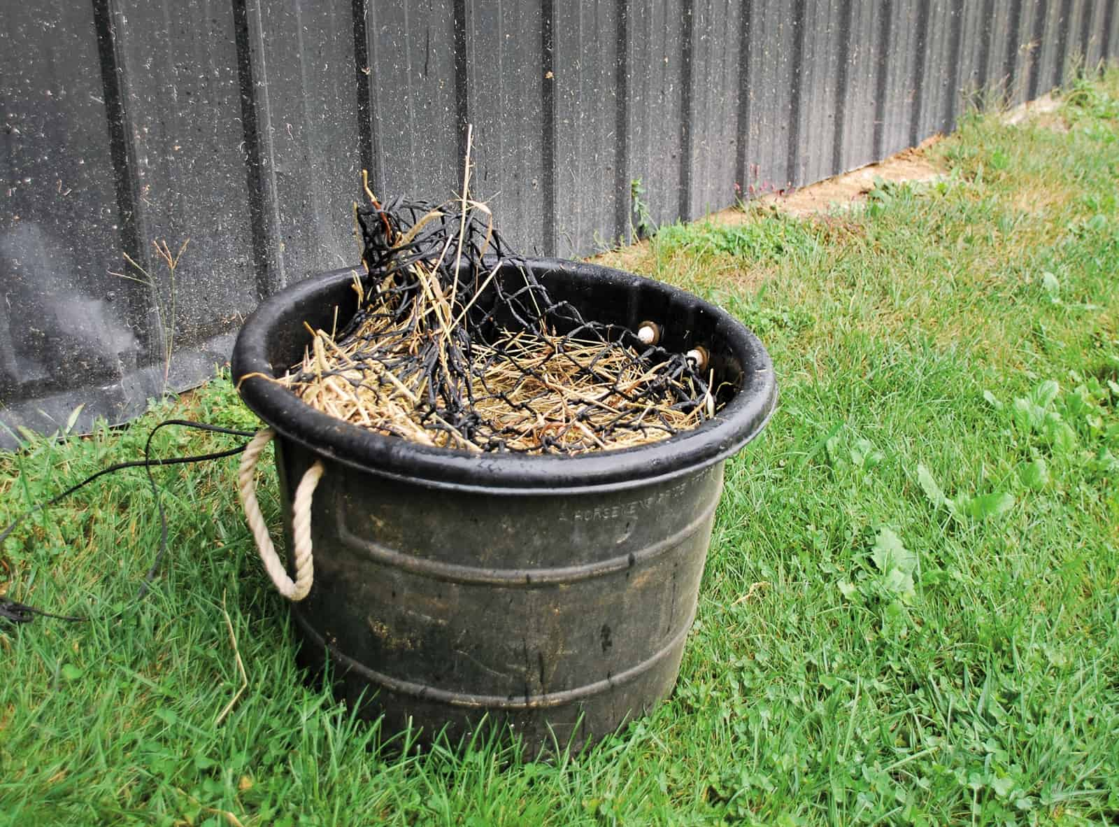 Soak hay to reduce its carbohydrate content if your horse has EMS or PSSM.