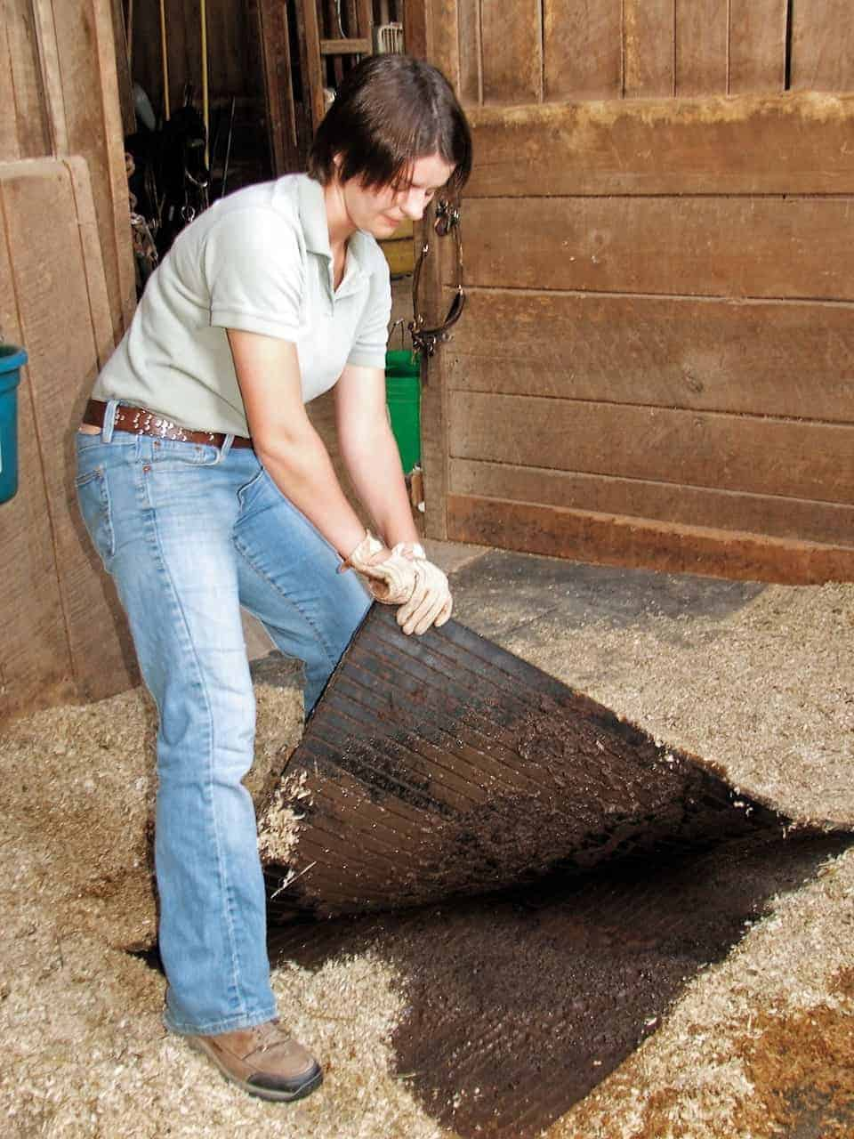 Demystifying Mats And Bedding The Horse