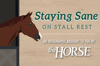 Infographic: Staying Sane on Stall Rest