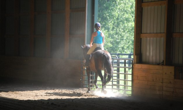 Researchers Examining Effects of Indoor Arenas on Horse, Human Health