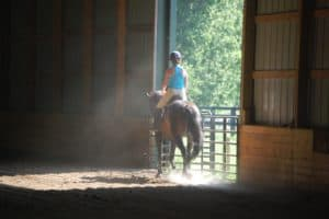 Indoor Arena Dust: Damaging to Horse and Rider