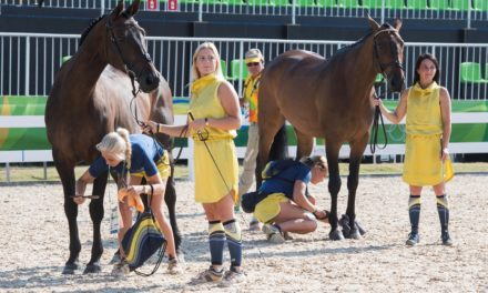 Eventing Horse Inspection Complete, Reserve Riders Called Up