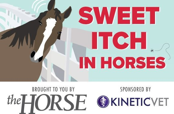 Infographic: Sweet Itch in Horses