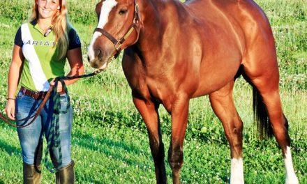 Keeping Horses Sound Post-Tendon Injury
