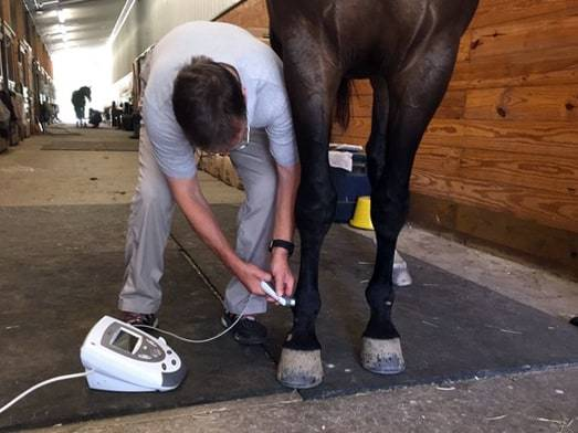 Rehabbing Soft Tissue Injuries in Horses