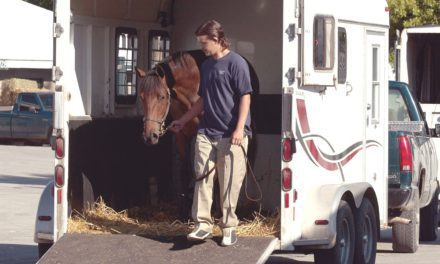 Relocating a Horse