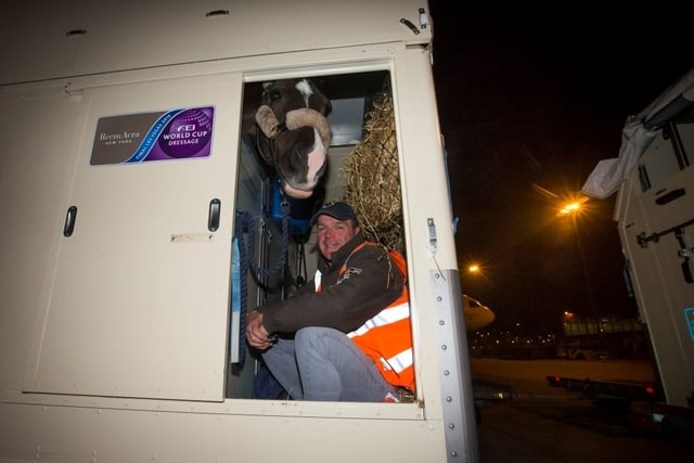Behind the Scenes: Transporting Elite Equine Athletes by Air