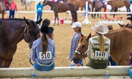 Three Ways to Prevent Equine Disease Spread This Show Season
