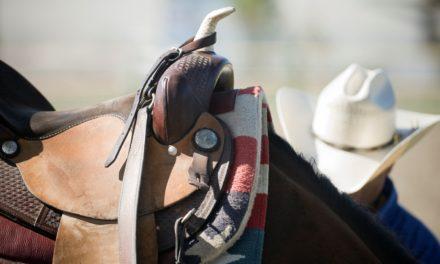 Poll Recap: Saddle Up!