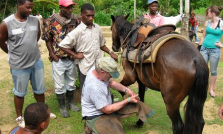 Providing Hoof Care in Developing Countries