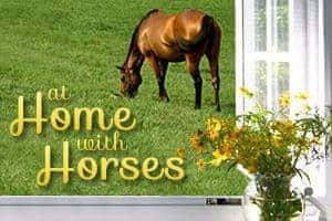 At Home with Horses Blog