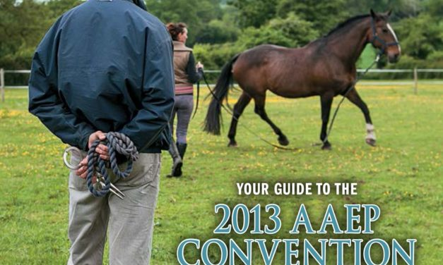 2013 AAEP Convention Wrap-Up