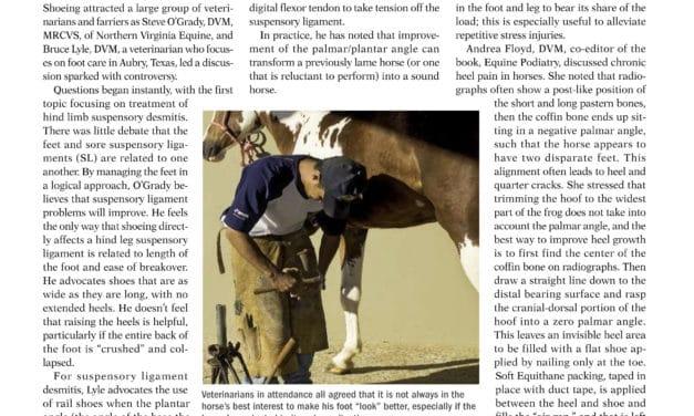 Foot Lameness in Horses
