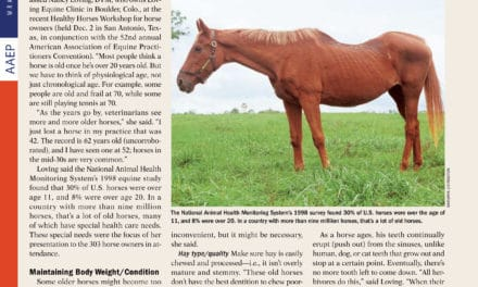 Horse Management and Care